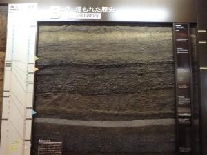 展示室にある野尻湖底の地層