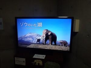 新映像タイトルは「ゾウのいた湖」