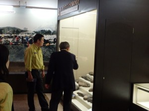 ナウマンゾウの臼歯化石を見学
