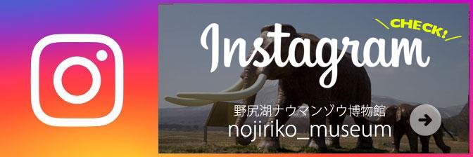 野尻湖ナウマンゾウ博物館 公式インスタグラム