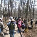 春の野鳥観察会