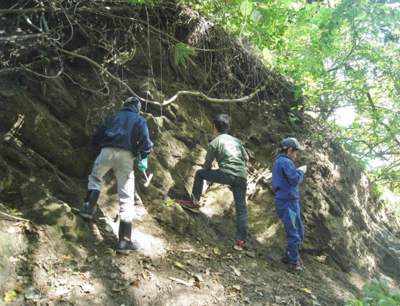 貝化石採集会
