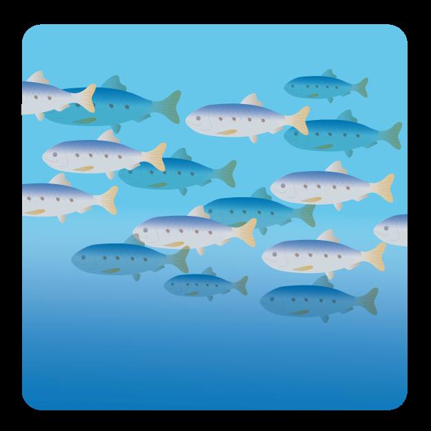 水族館で学ぶ進化-上越市立水族博物館-
