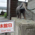 野尻湖ナウマンゾウ博物館改修工事に伴う休館のお知らせ