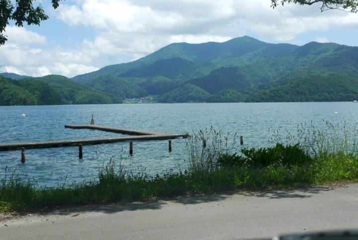 初夏の自然観察会 野尻湖のひみつをさぐろう